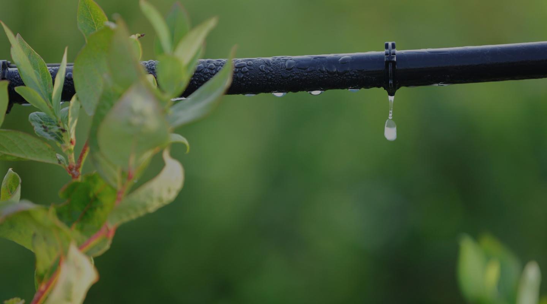Impianti di irrigazione Plastic Puglia