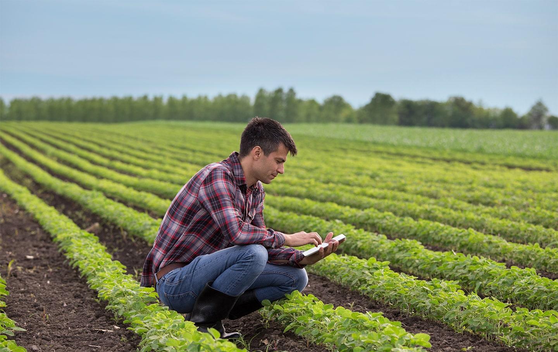 Digital Farming: sistemi di automazione in agricoltura